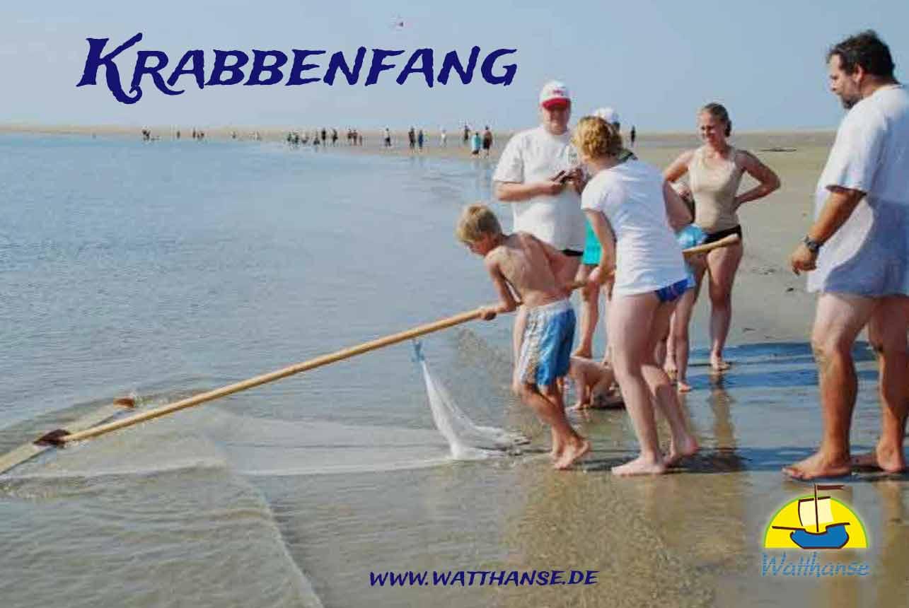 Krabbenfang am Strand von Borkum mit den Borkumer Originalen der Watthanse