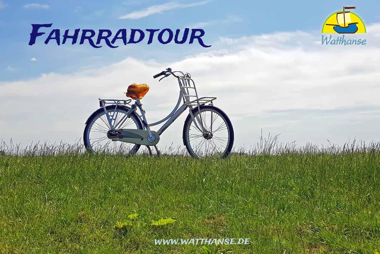 Fahrradtour über die Insel Borkum auch den Nationalpark Wattenmeer mit den Borkumer Originalen der Watthanse