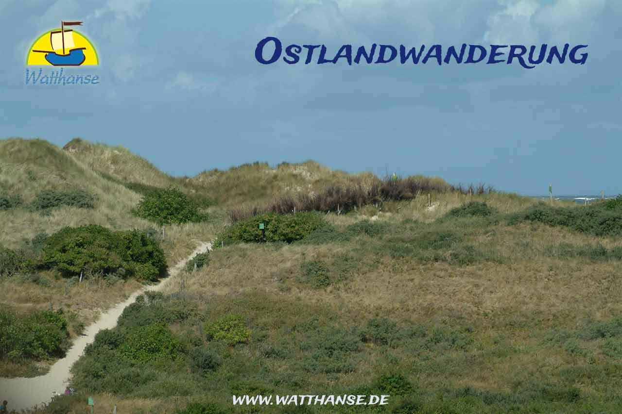 Wanderung im Nationalpark Niedersächsisches Wattenmeer auf dem Ostland von Borkum mit den Borkumer Originalen der Watthanse