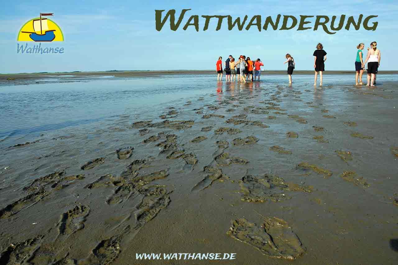 Wattwanderung auf Borkum im Wattenmeer mit den Wattführern der Watthanse