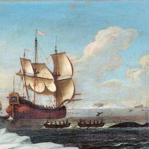 Wal da bläst er – von Grönlandwalen und Nordkapern
